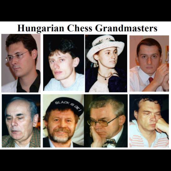 Végh Endre - Hungarian Chess Grandmasters - Magyar Sakk Nagymesterek